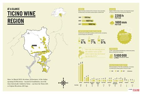 Swiss_Wine_Infographics_Ticino_EN_456x30