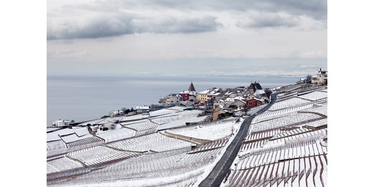 Switzerland, A Pinot Noir Country